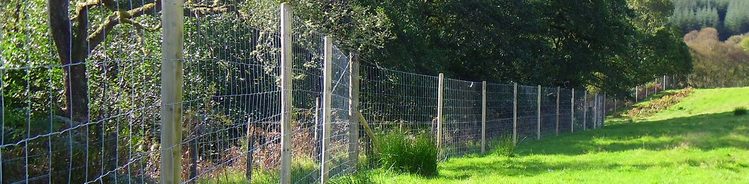 Hodge Fencing - help and how to...